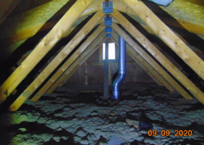 Netley Avenue Attic Inspection